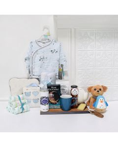 DARLING BABY GIFT BASKET, baby gift basket, welcome home baby gifts, new parent gifts