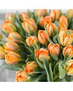 Seasonal Flowers of The Month